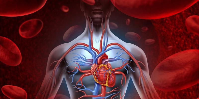 Erektilna disfunkcija kao prediktor srčanih oboljenja
